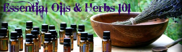 101 oils and herbs class banner
