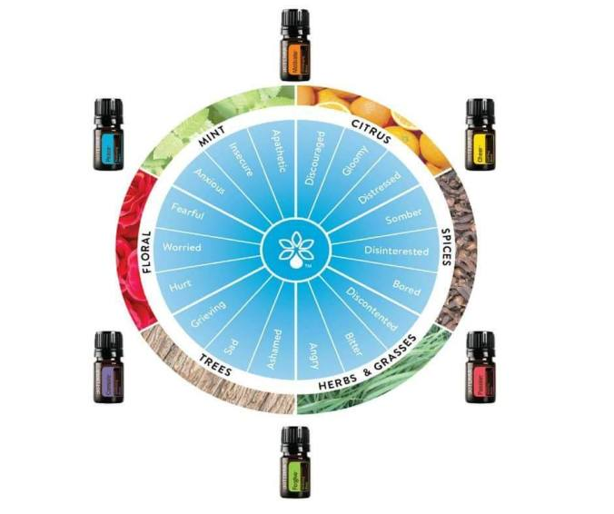 emotional aromatherapy wheel